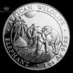 2017 Somalia 1 oz Sølv African Elephant BU