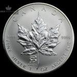 2001 Kanada 1 oz Sølv Maple Leaf Lunar Snake Privy