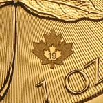 2019 Kanada 1 oz Gold Maple Leaf BU