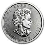 2020 Kanada 1 oz Platinum Maple Leaf BU